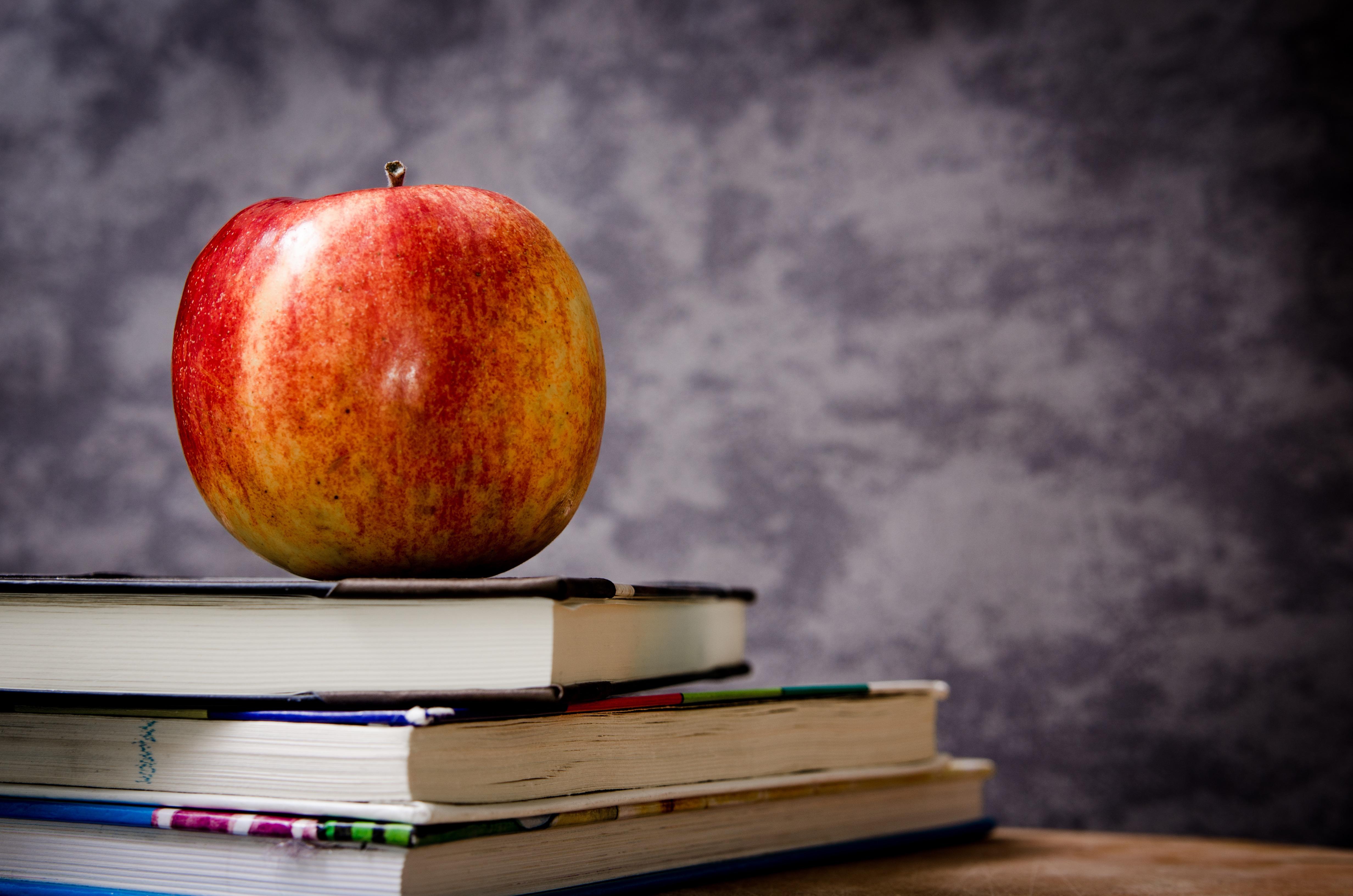 Udvid din viden med er online kursus!